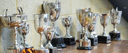 Somerset ASA Trophies